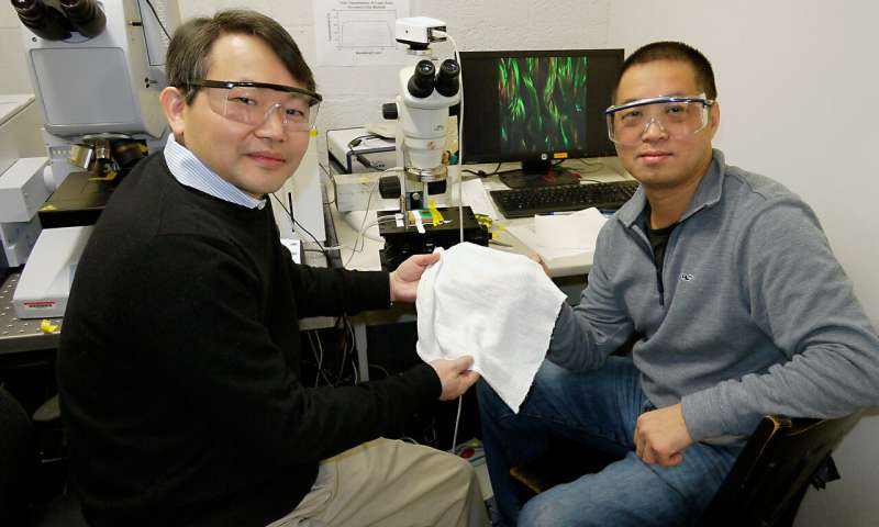 Scientists develop first fabric to automatically cool or insulate depending on conditions